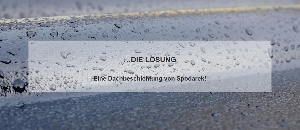 Dachneueindeckung Alternative / Neueindeckung in  Ludwigshafen (Rhein)
