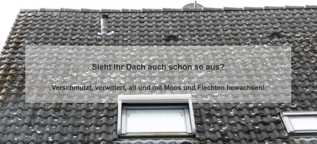 Dachprobleme aus 67059 Ludwigshafen (Rhein): Schäden an der Oberfläche, Ziegel, Dachsteine